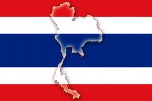 태국 기타 조사
