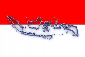 인도네시아 조사